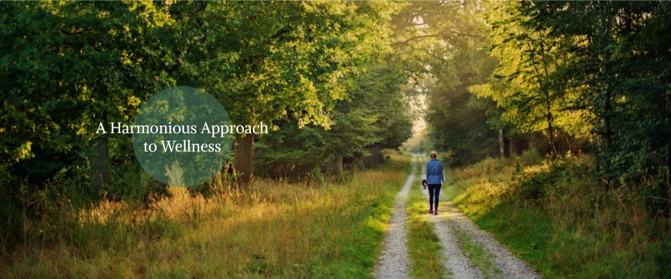 A Harmonious Approach to Wellness - taking a walk